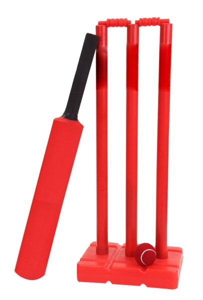 Cricket Training Set