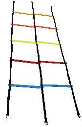Agility Double Ladder - Multi Color